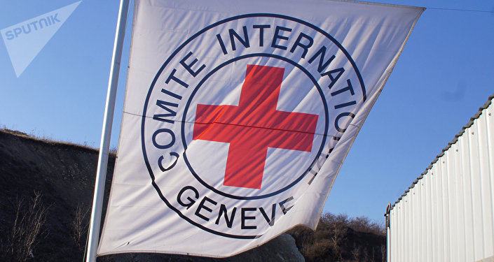 Flag of the International Committee of the Red Cross. (File)