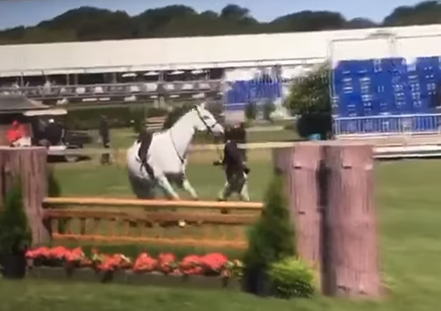 Jazz Johnson-Merton, heiress to the Johnson & Johnson multinational consumer goods producer, was filmed kicking the crap out of her horse at the Hampton Classic on September 1