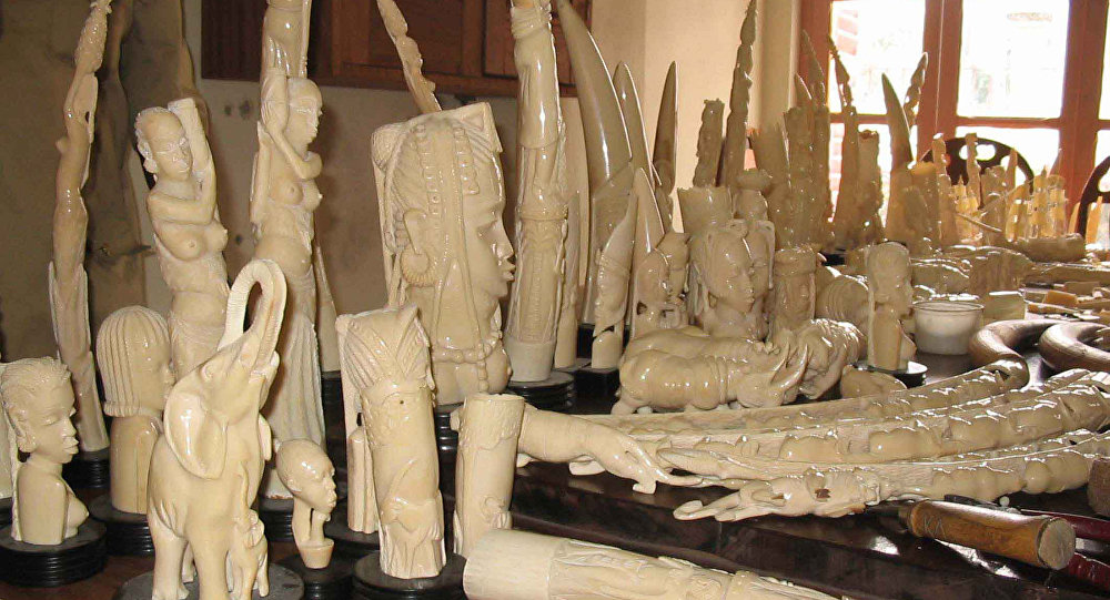 Carved ivory figurines, made from the tusks of poached elephants