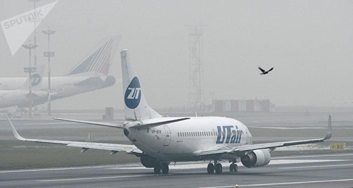 UTair airline's Boeing 737 at Vnukovo Airport. (File)