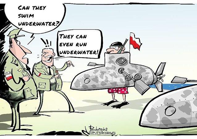 Poland's Submarines