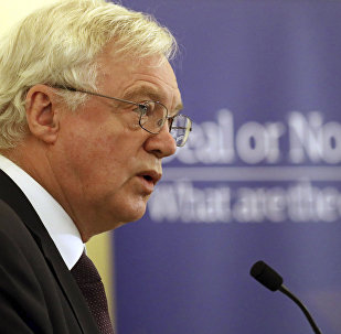 British Secretary of State for Exiting the European Union David Davis speaks to the ECR Deal or No Deal conference in Central Hall Westminster, London, Tuesday Nov. 21, 2017.