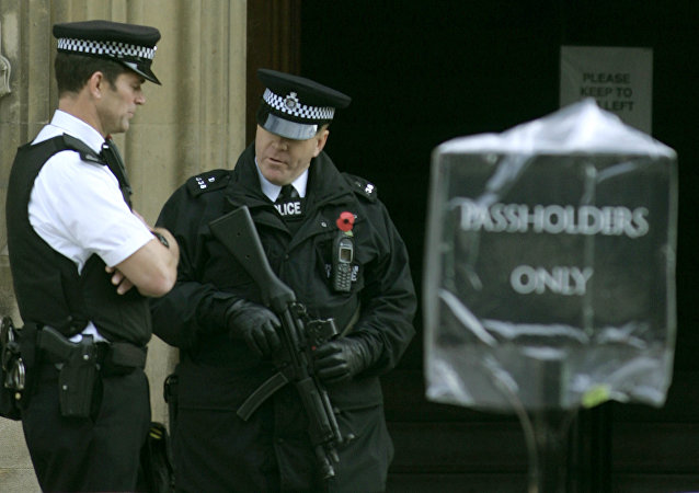 Armed police stand outside an entrance to the Palace of Westminster, in London.