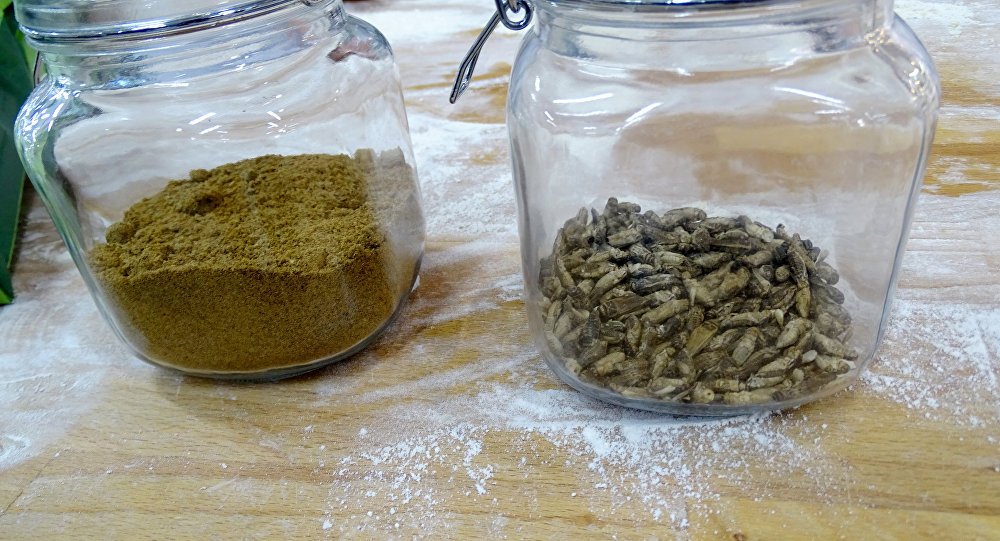 Flour ground from dried crickets and crickets in jars, for the first mass-delivered bread made of insects, are seen at the Finnish food company Fazer bakery in Helsinki, Finland November 23, 2017