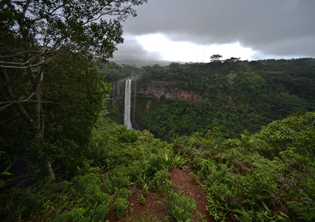 The Chamarel Waterfall, one of the largest waterfalls on the Island of Mauritius