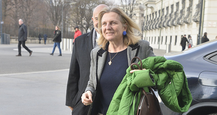 Designated Foreign Minister Karin Kneissl arrives for talks with Austria's President on December 17, 2017 at the Hofburg palace in Vienna