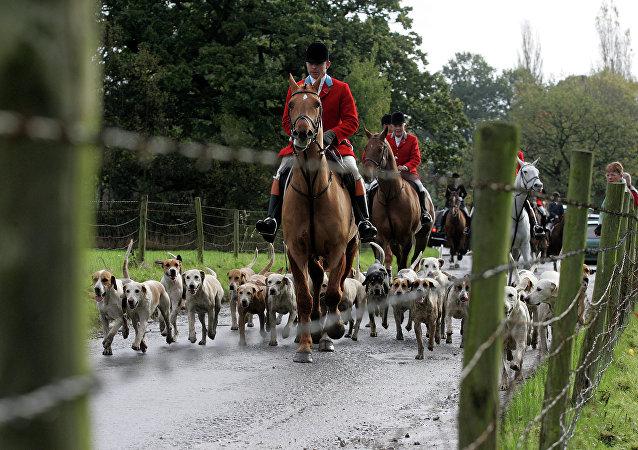 Britain Hunting