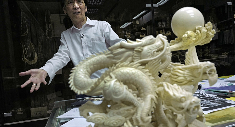 of Lise Carving and Jewellery gestures during an interview at his workshop in Hong Kong. Chan complains that department stores stopped selling his ivory on consignment after protests by conservation groups. He denies the ivory industry is responsible for elephant deaths in Africa, despite clear evidence that poaching is the main factor.