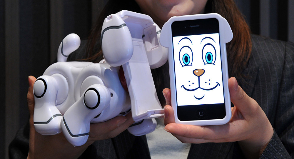 An employee of Japanese toy manufacturer Bandai displays a new virtual pet robot Smart Pet, which is used to dock iPhones or iPods at a press preview in Tokyo. (File)