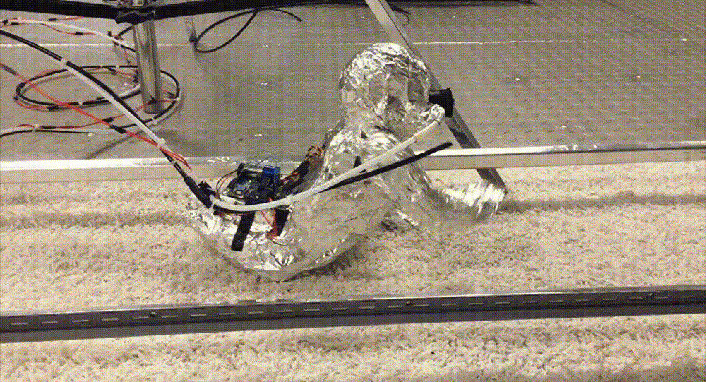 A robot baby was used to determine how much biological material crawling infants stir up from carpets by a research team led by Brandon E. Boor, an assistant professor at Purdue University