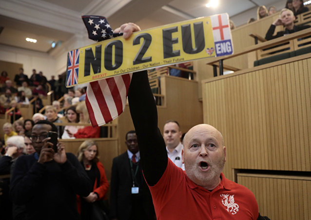 A demonstrator holds a pro-Brexit sign and a U.S. flag, as the speech by the Mayor of London, Sadiq Khan, is interrupted at the Fabian Society New Year Conference, in central London, Britain January 13, 2018