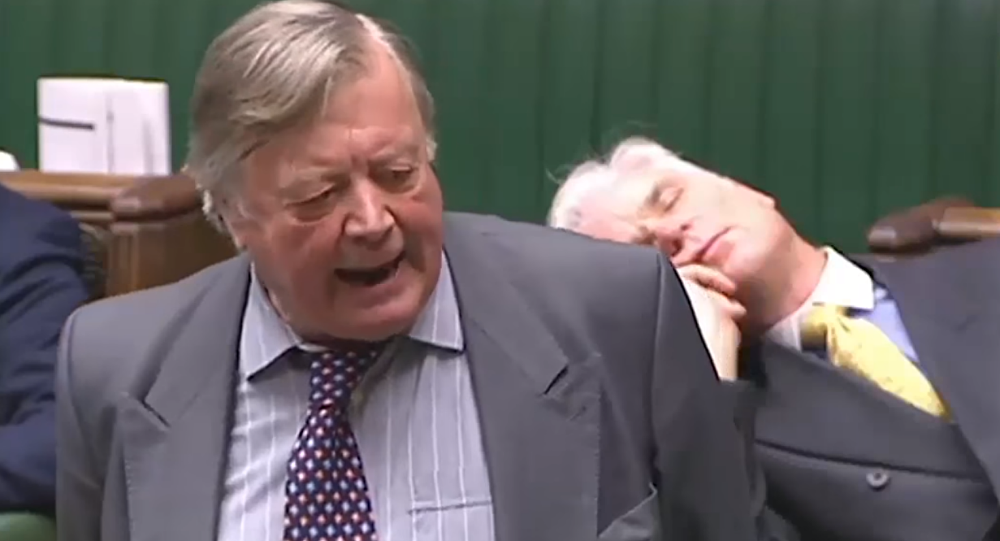 UK politician Desmond Swayne falls asleep during live broadcast of House of Commons debate