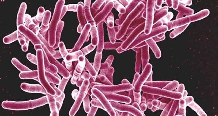 Plan revealed to fight growing resistance to antibiotics