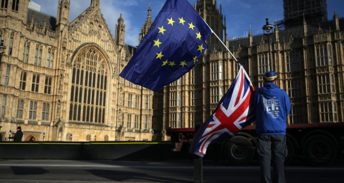 A pro-European Union,(EU), anti-Brexit demonstrator holds the EU and UK flags outside the Houses of Parliament, in central London on January 22, 2018
