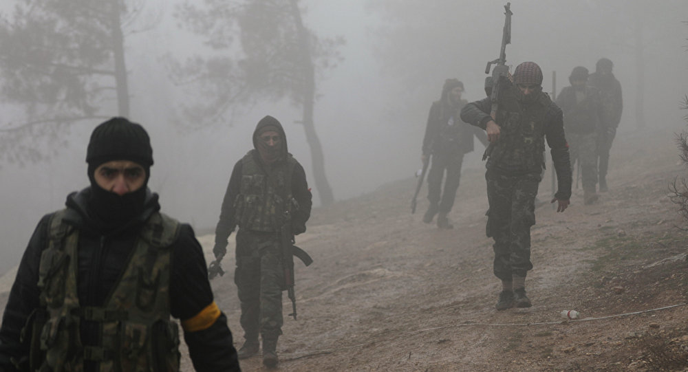 Turkish-backed Free Syrian Army fighters are seen near Mount Barsaya, northeast of Afrin, Syria