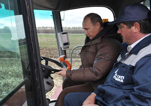 Vladimir Putin seen inside the grain harvester (File)