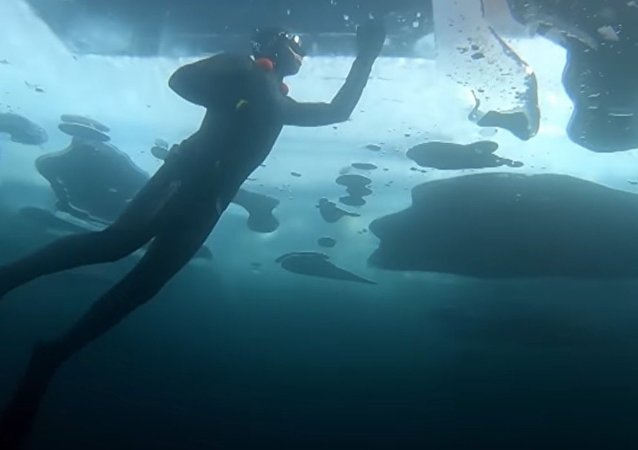 Extreme Swimmer Dived to a Depth of 26 Meters Under the Ice of Lake Baikal