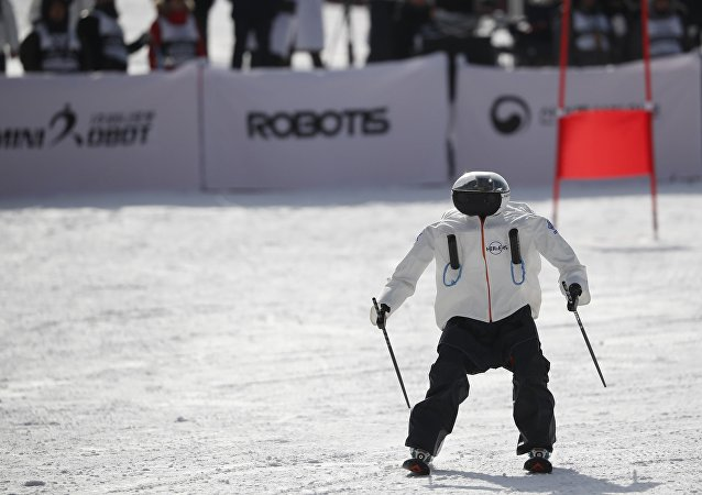 A robot takes part in the Ski Robot Challenge at a ski resort in Hoenseong, South Korea, February 12, 2018.