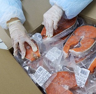A worker at the Russian Fish Factory fish processing plant puts finished product in the box on the packaging line