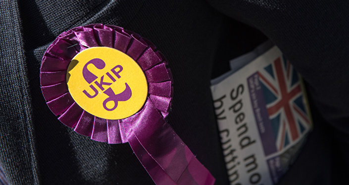 A UK Independence Party (UKIP) rosette (File)