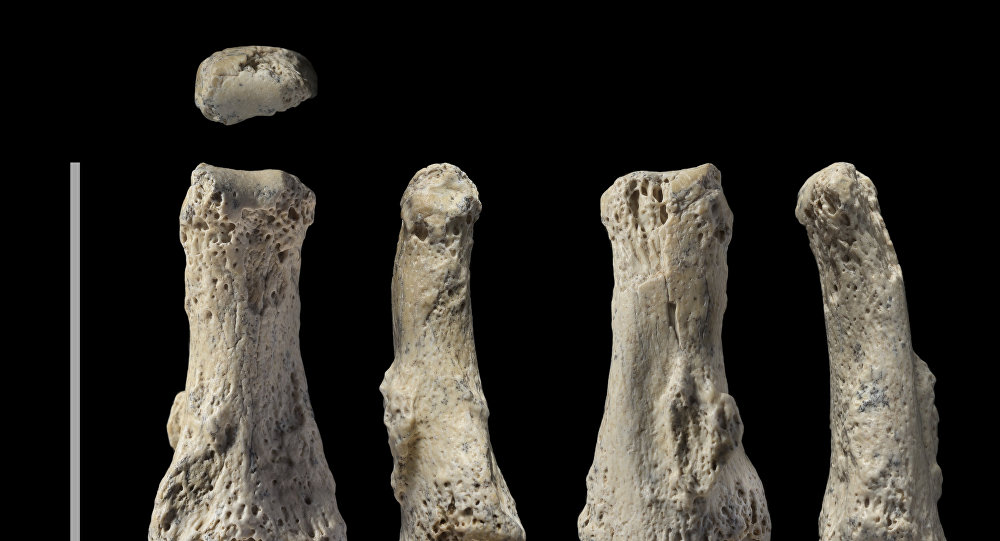 The single fossil finger bone of Homo sapiens - pictured from various angles - from the Al Wusta site, Saudi Arabia is pictured in this undated handout composite photo obtained by Reuters April 9, 2018