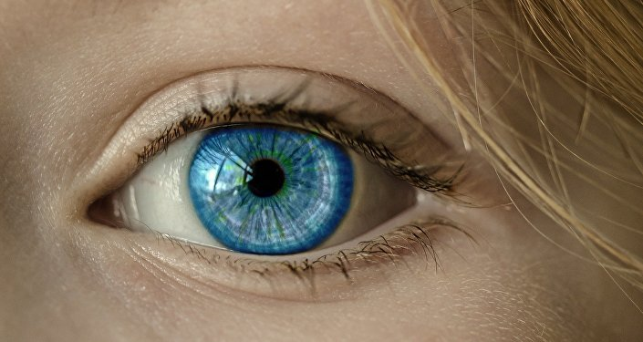 Scientists Combine Brain Magnetic Fields, Eye-Tracking to Control Computers