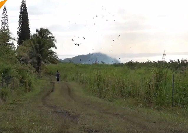 US: Toxic Gas Hits Hawaii's Big Island Amid Mass Volcano Eruption