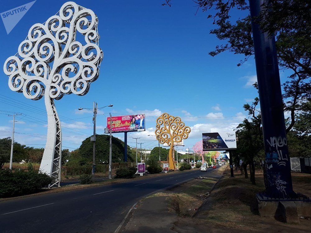 These 'Trees of Life' were erected by Vice President Murillo but were targeted by protesters