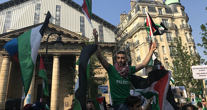 Demonstrators gather in Paris to protest Gaza violence