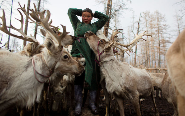 Meet the Inhabitants of Taiga Debris: Reindeer, Herders and Shamans of Mongolia
