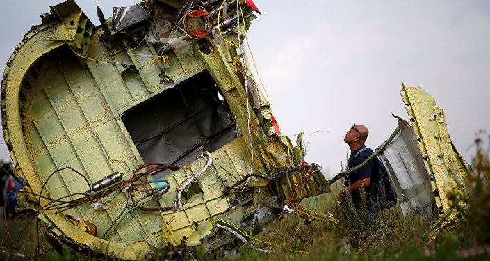 A Malaysian air crash investigator inspects the crash site of Malaysia Airlines Flight MH17, near the village of Hrabove (Grabovo) in Donetsk region, Ukraine, July 22, 2014