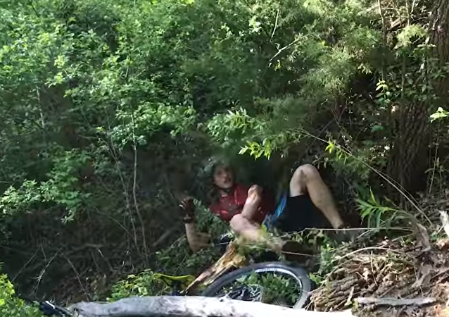 Tree Falls on BMX Biker After He Crashes Into It