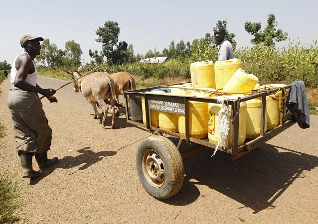 Men drive a donkey-cart as they carry water from a stream in the village of Nyang'oma Kogelo, west of Kenya's capital Nairobi, July 15, 2015. U.S
