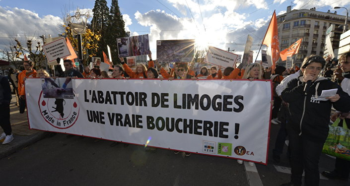 Protesters hold a banner reading The Limoges slaughterhouse, a real butchery! during a demonstration called by animal rights association L214 to protest against animal abuse, notably the slaughtering of pregnant cows, on November 26, 2016, in Limoges, central France
