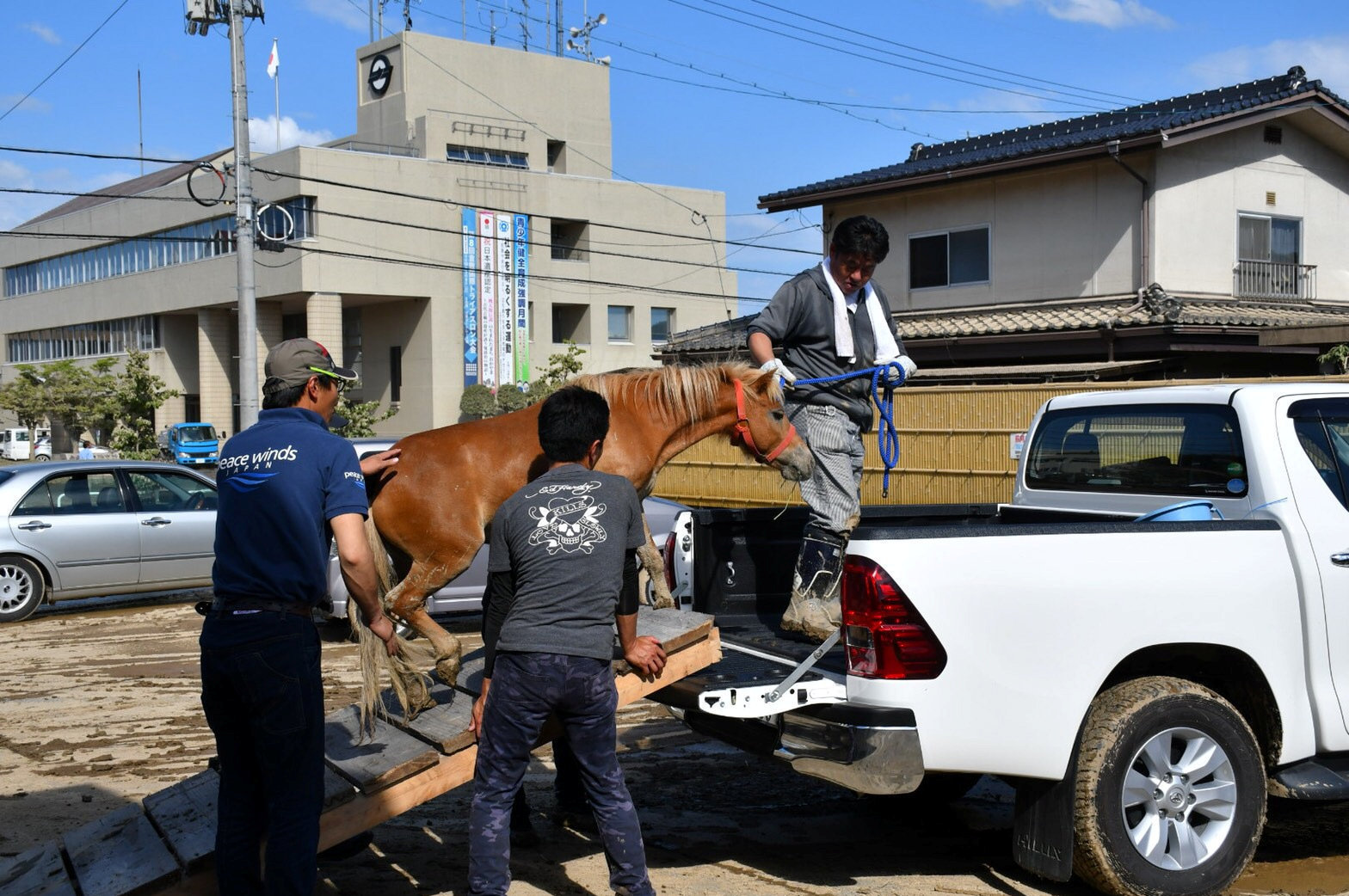A horse stranded on a rooftop after torrential rain, is rescued in Kurashiki, Okayama Prefecture, Japan July 9, 2018