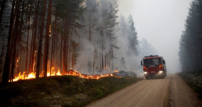 A wildfire is seen in Karbole outside Ljusdal, Sweden, July 15, 2018. Picture taken July 15, 2018