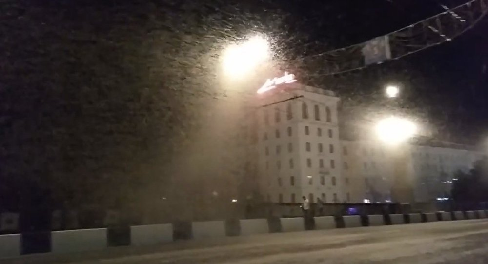 Swarms of Mayflies in Vitebsk. 2018
