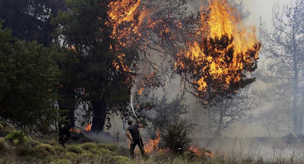 (File) A volunteer tries to extinguish a burning tree during a forest fire near Kapandriti north of Athens, Tuesday, Aug. 15, 2017