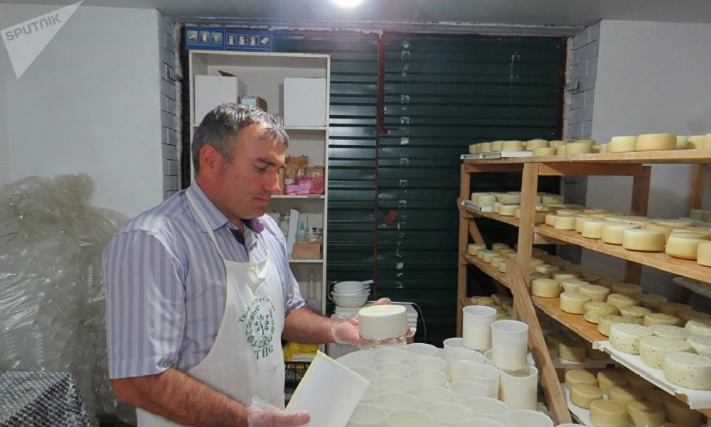 Magomed Aliyev making goat cheese.