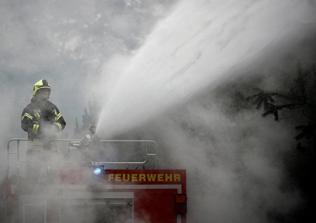 Firefighters help to put out a forest fire near Treuenbrietzen, Germany August 24, 2018.