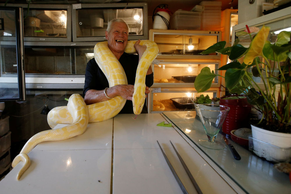Cold-Blooded Tenants: A French Man Who Owns 400 Reptiles