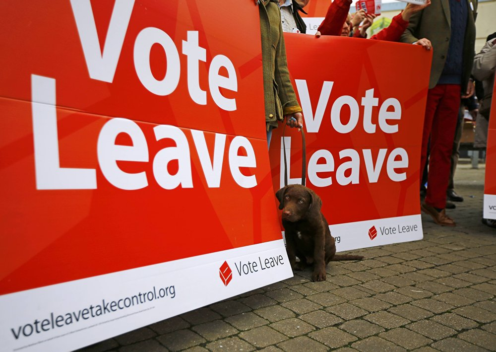 A dog sits by a sign as supporters gather for the launch of the Vote Leave bus campaign, in favour of Britain leaving the European Union, in Truro, Britain May 11, 2016