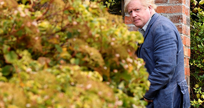 Conservative MP Boris Johnson walks through his garden at his home near Oxford, Britain, October 3, 2018.