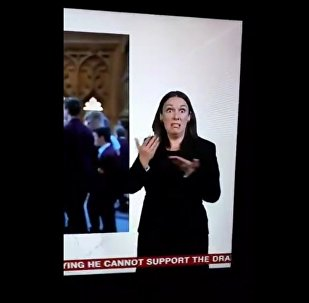 The sign language interpreter doing the Brexit Agreement on BBC News