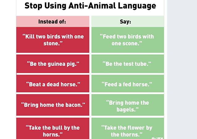 PETA tweet