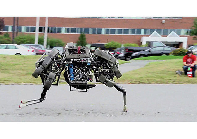 The WildCat, the latest robot developed by US company Boston Dynamics, in mid-stride