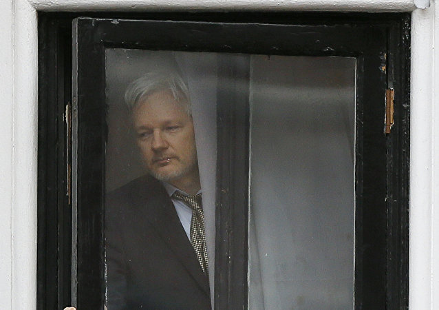 Wikileaks founder Julian Assange