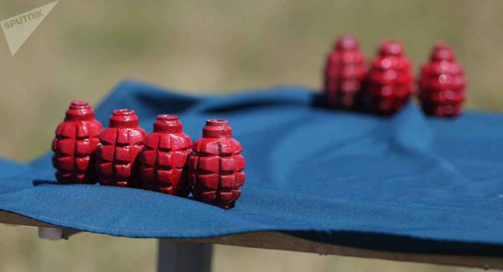 Dummy grenades (File photo)