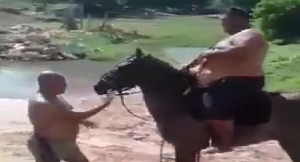 Man Tries to Ride a Horse