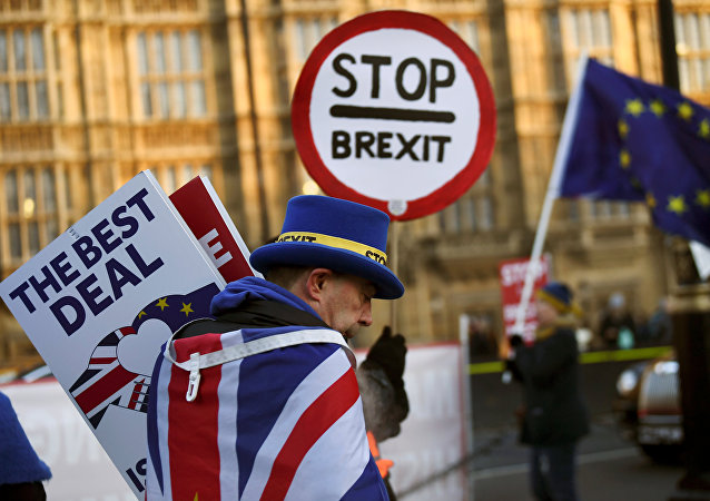 An anti-Brexit protester walks outside the Houses of Parliament in London, Britain January 17, 2019